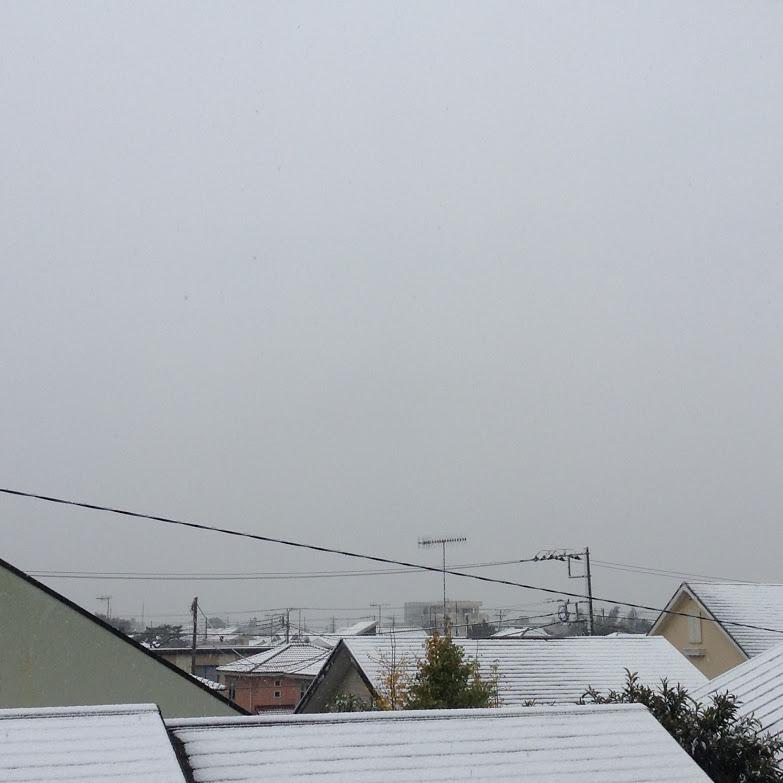 茅ケ崎も雪です